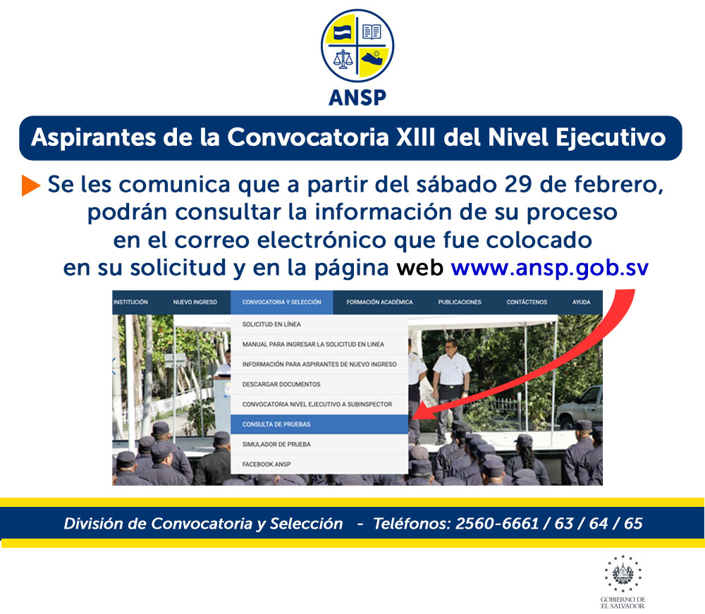 AVISO-CONSULTAS-EJECUTIVO