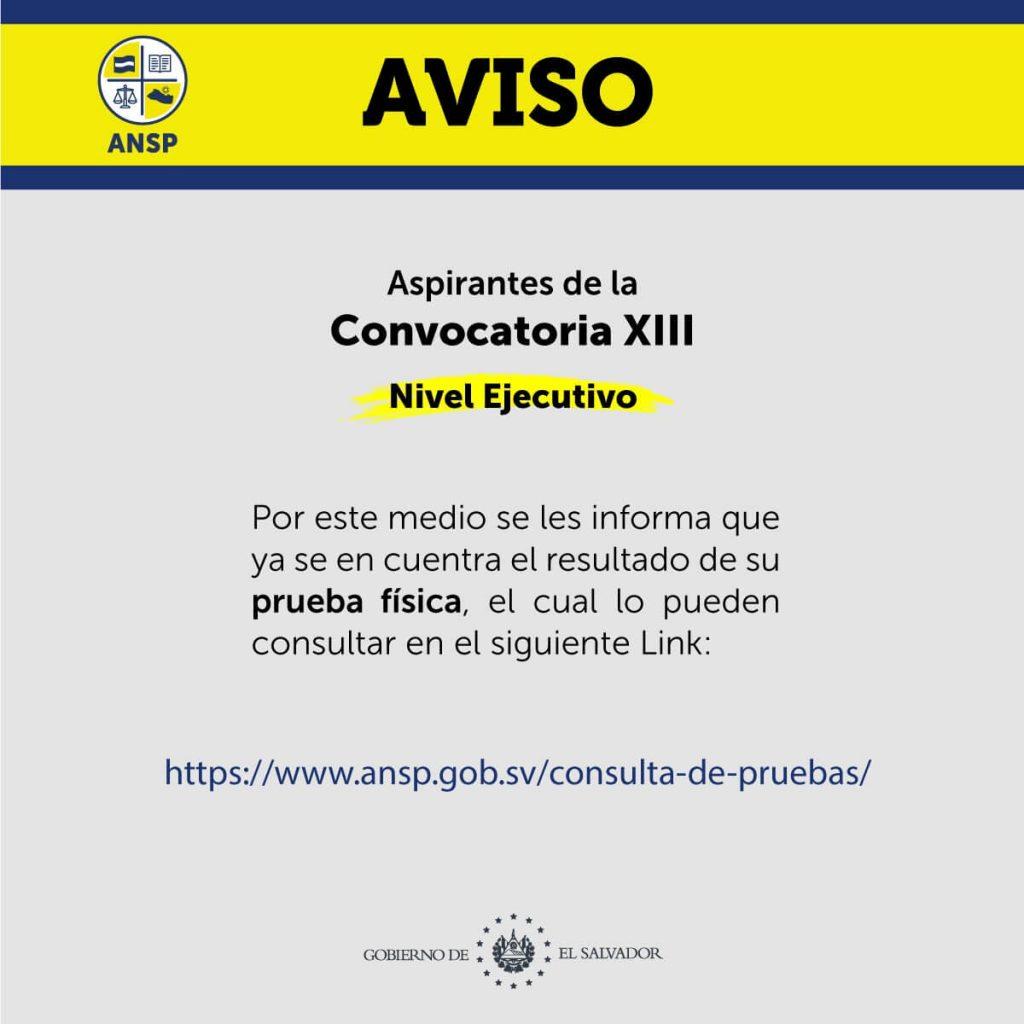 Aviso convocatoria XIII, nivel ejecutivo